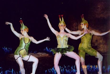 תלבושות ממשי שניצבעו לירוקים ויושנו עבור להקת המחול של עינבל פינטו